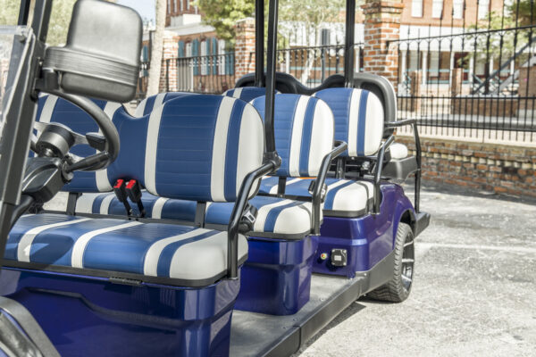 blue-8seater_standard-15