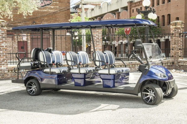 blue-8seater_standard-2