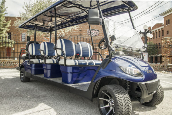blue-8seater_standard-4