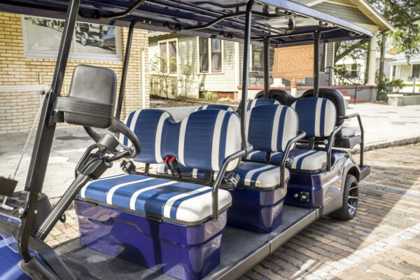 blue-8seater_standard-46